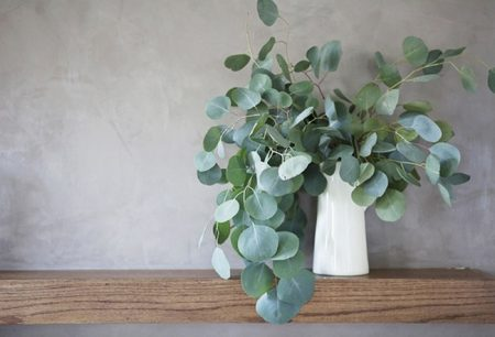 eucalyptus-decor-02